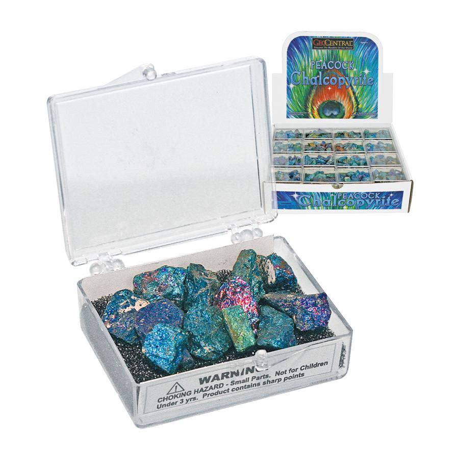 Assorted Peacock Chalcopyrite Stones