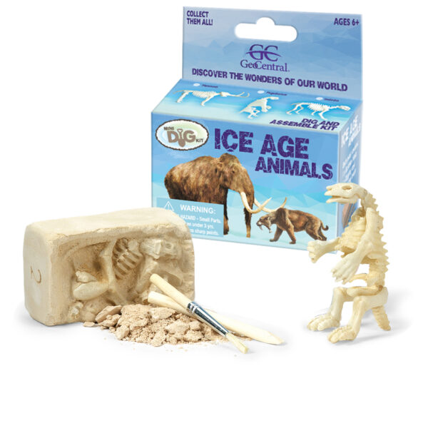 Ice Age Dig Kit, block and tools