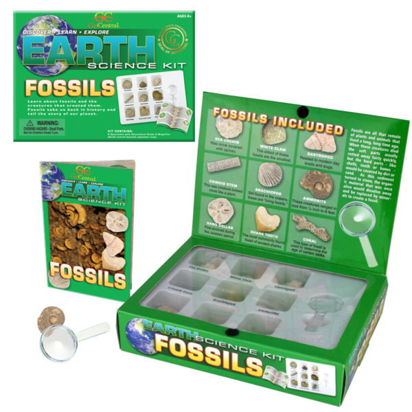 Fossils Earth Science kit, magnifier and Guide