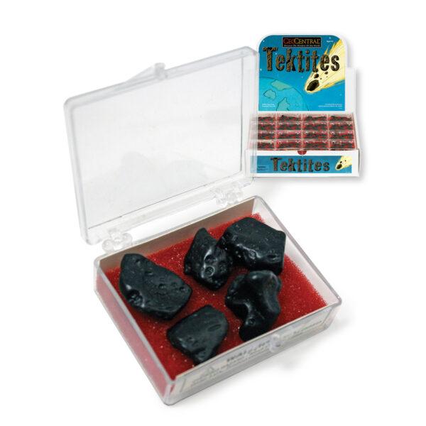Tektites to Go and plastic box