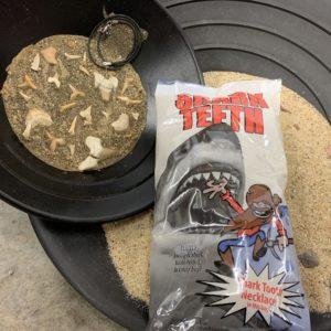 Large Shark Tooth Bag