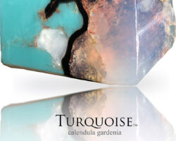 Turquoise 2020 1A©sml (1)