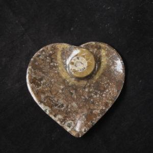 Ammonite Heart Dish