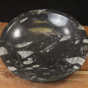 "Orthoceras 8"" bowl"