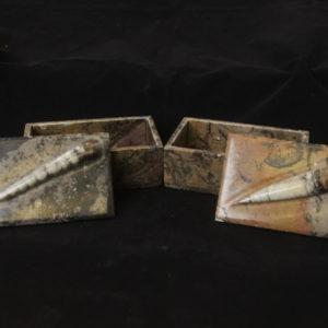 Ammonite Orthoceras Jewelry trinket box