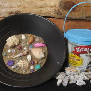 Sea Shell Mining Bucket, Light Blue Bucket