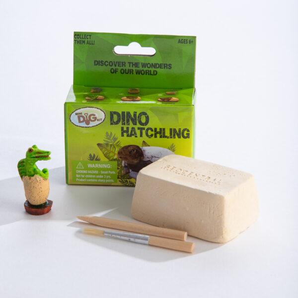 Dino Hatchlings Mini Excavation Kit Display Box