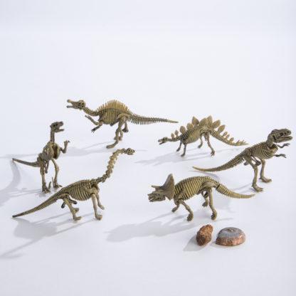 Excavation Kit Dinosaur Skeletons Front view