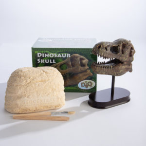 Excavation Kit: Dinosaur Skull