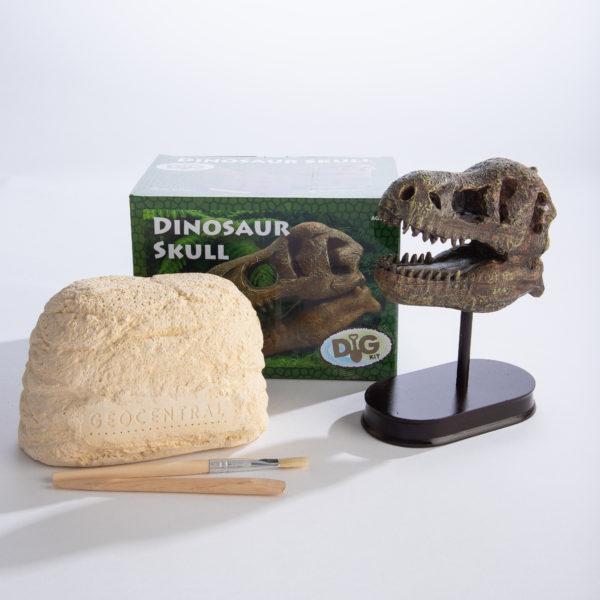 Excavation Kit Dinosaur Skull