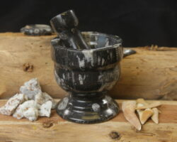 Orthoceras Mortar and Pestle
