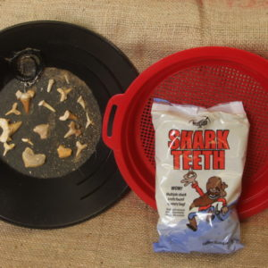 Small Shark Tooth Bag + Sifter
