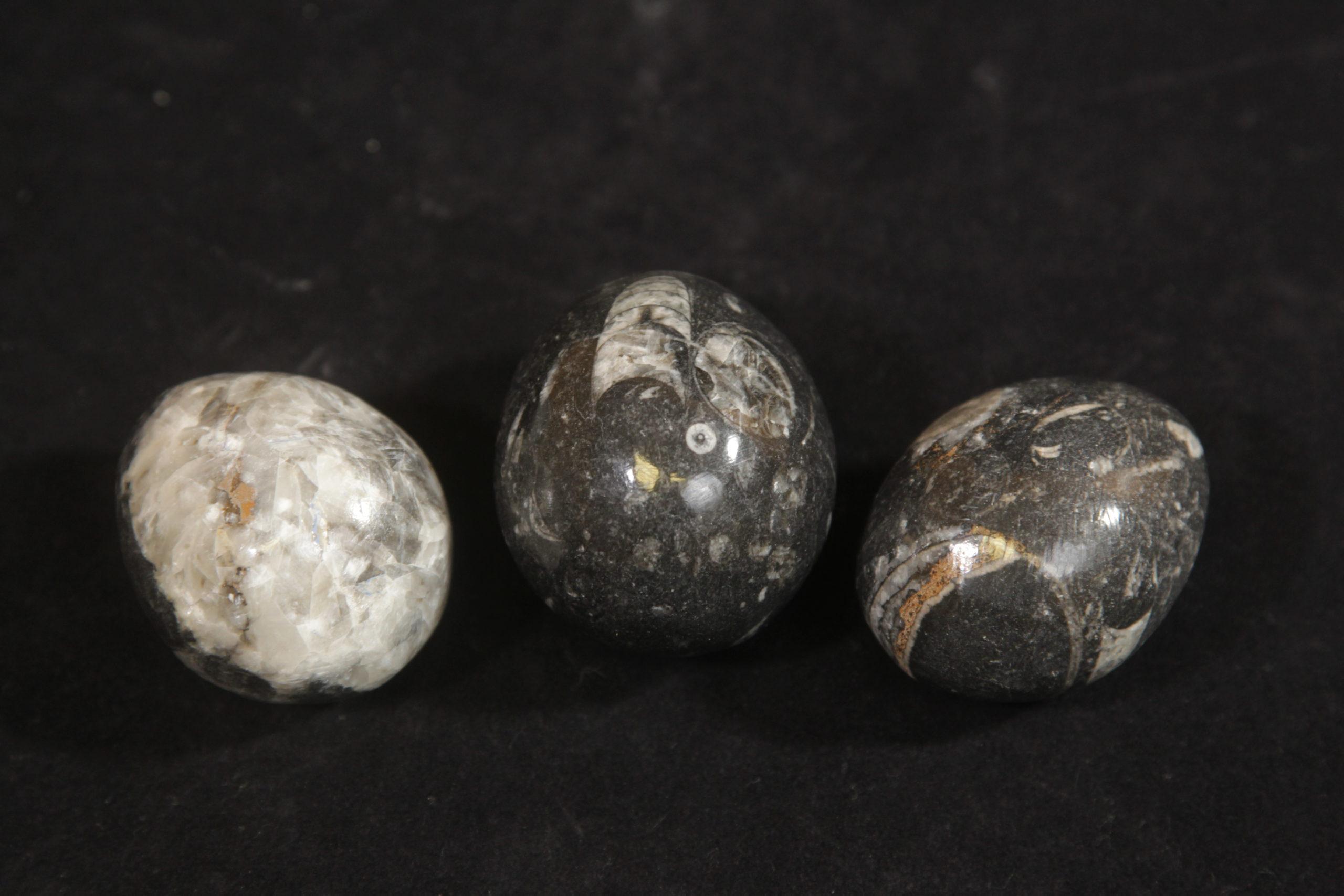 Aragonite egg Large 2.5 inch