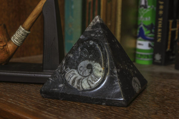 Black Orthoceras Pyramid with Ammonite fossil view from the side