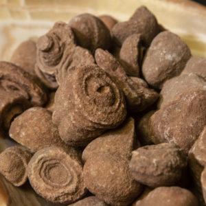 5 Fossilized Stromalites