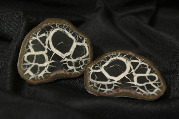 Pair of Dragon Stone Septarian Nodules