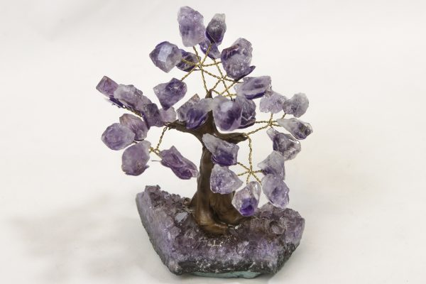 Small Amethyst Crystal Point Trees with ruler for size comparison