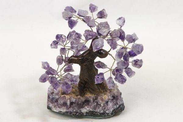 Medium Amethyst Crystal Point Trees front view
