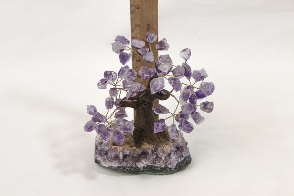 Medium Amethyst Crystal Point Trees with ruler for size comparison