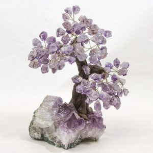 Amethyst Crystal Point Gem Trees Large