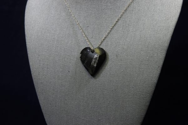 Orthoceras Fossil Heart Pendant front view