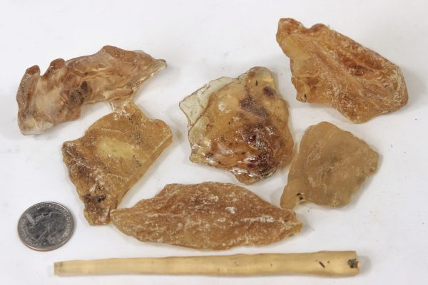 Pile of Quarter pound of Raw Amber Copal with quarter for size comparison