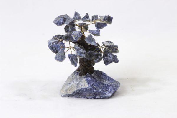Small Sodalite Crystal Gemstone Tree