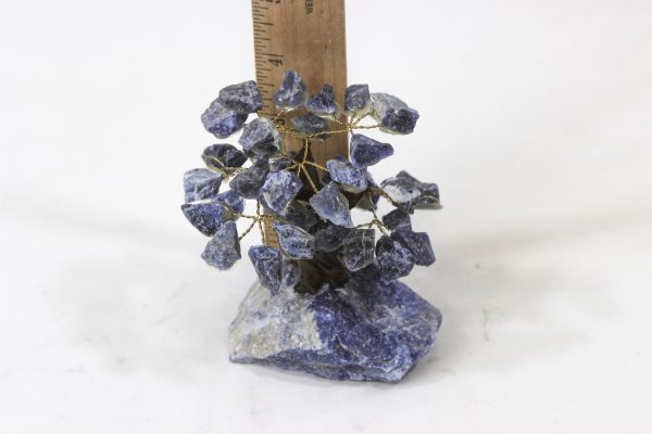 Small Sodalite Crystal Gemstone Tree next to ruler for size comparison