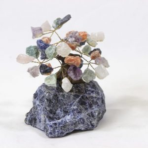 Mixed Crystal Points Gemstone Tree with Sodalite Base