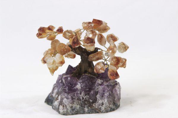 Small Citrine Crystal Point Tree