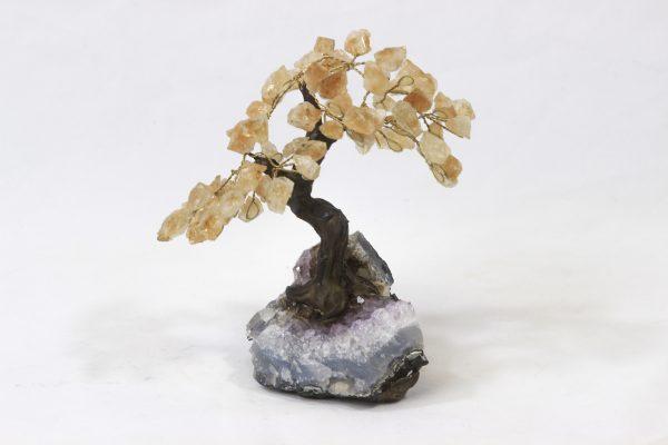 Medium Citrine Crystal Points Gemstone Tree