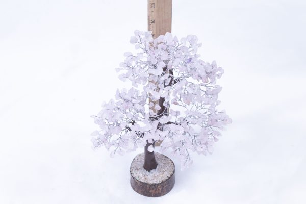 500 stone Rose Quartz Tree with Wood Base with ruler to show size