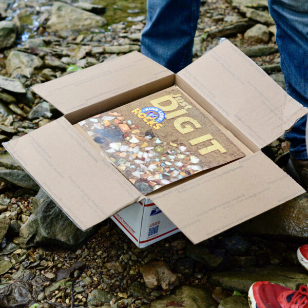 This is an image of the Kids Love Rocks Bonanza Box