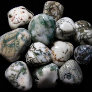 1lb of Large Tumbled Tree Agate (33mm-50mm)
