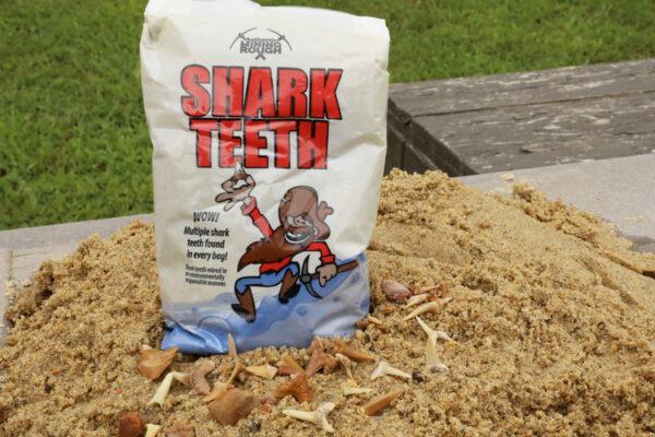 Small Shark Teeth Bag