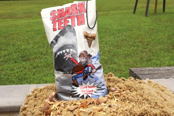 Large Shark Tooth Activity Kit Bag