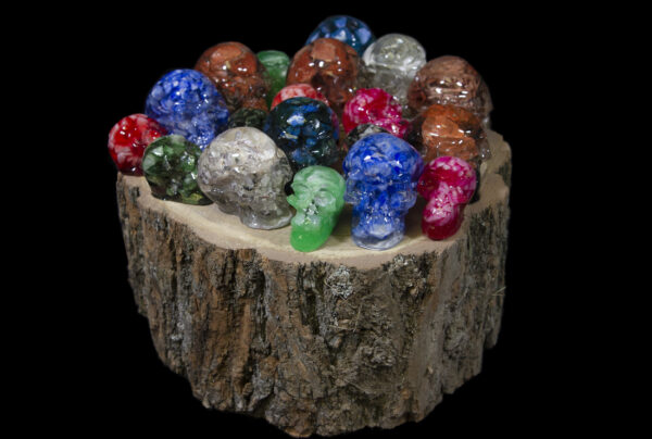 Skulls of assorted shapes and sizes on wooden log