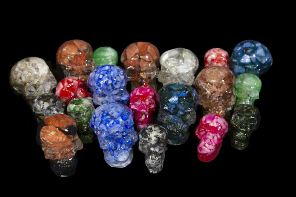 Skulls of assorted shapes and sizes
